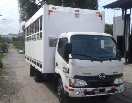 Para cargar carritos de paletas